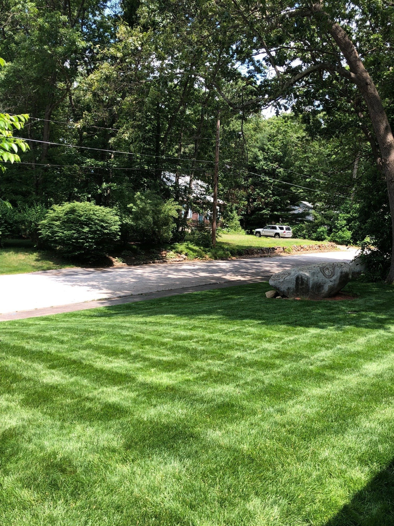 Spring Lawn Fertilizer Application