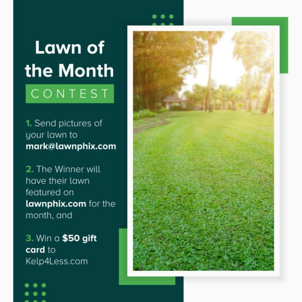 Lawn-of-the-Month-Graphic