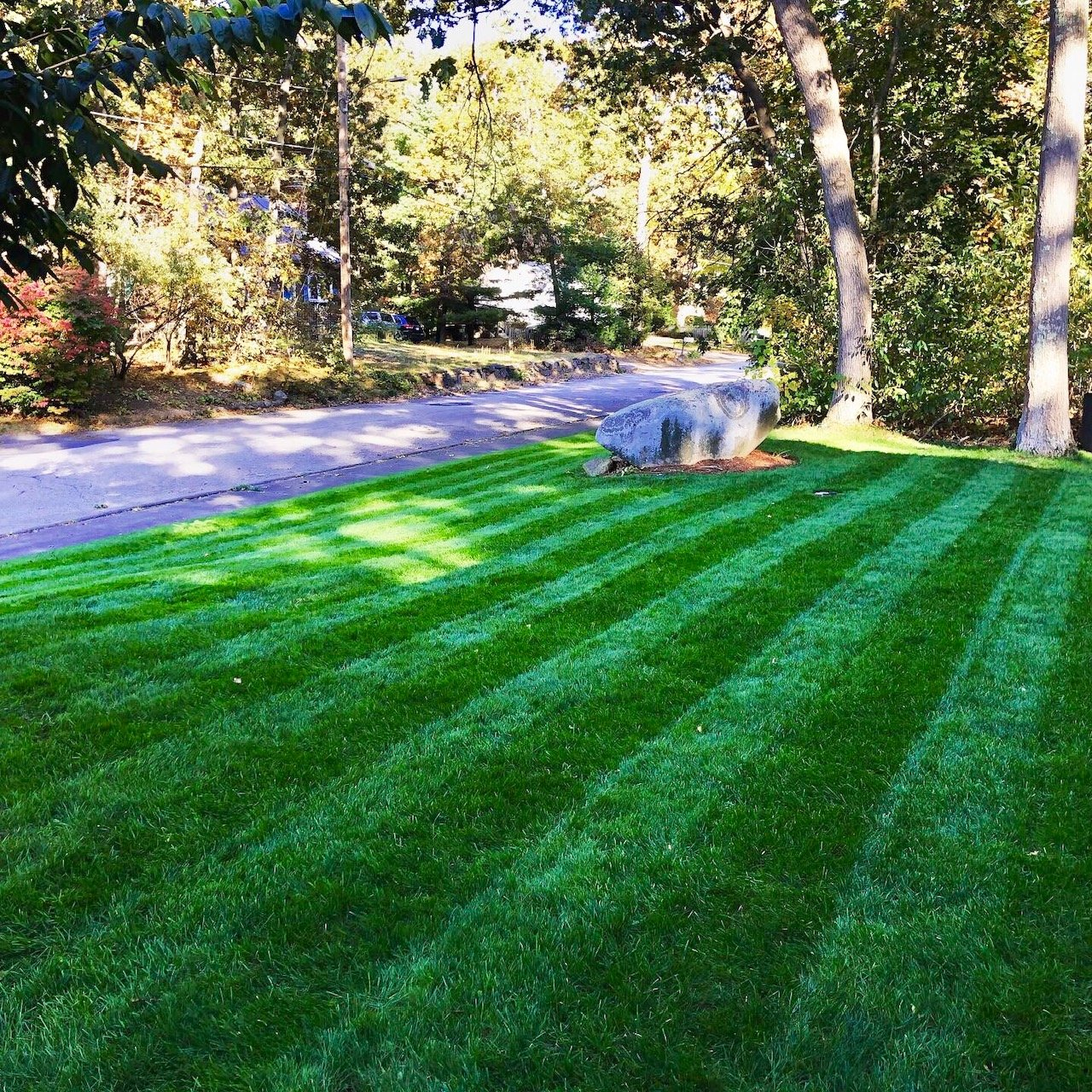 awesome lawn