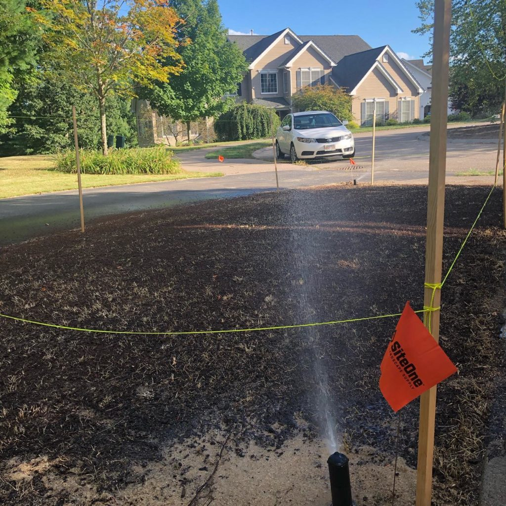 watering grass seed on bare dirt